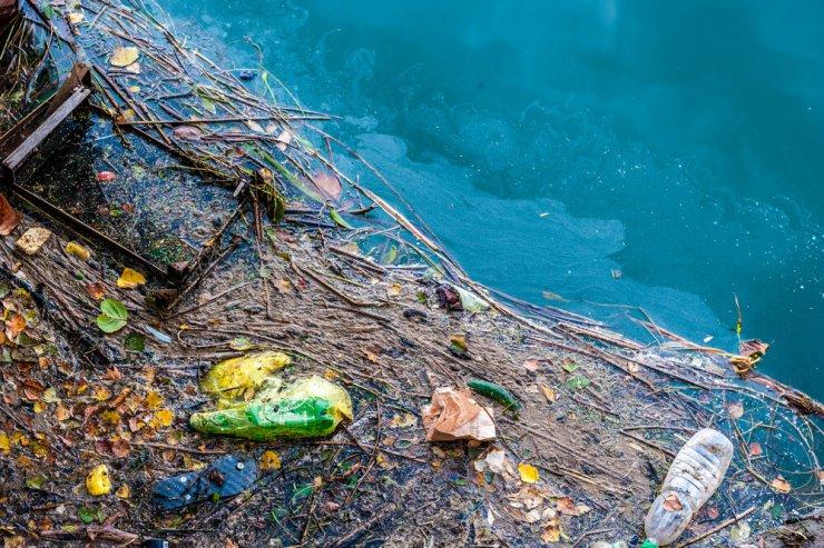 Se zavedamo, kako pomembna so morja za naše preživetje?