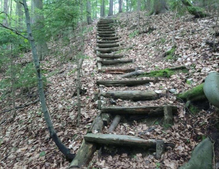 Naj planinska pot je Rečiška planinska krožna pot!