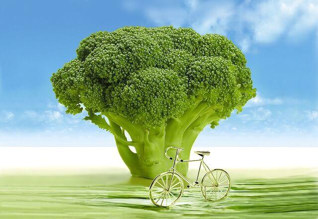 Pomanjkanje vitamina K v starejšem obdobju slabo vpliva na mobilnost