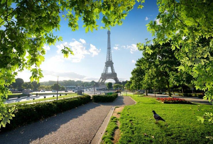 Pariz se bo proti podnebnim spremembam boril z urbanimi gozdički