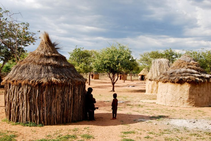 Etiopija zasaja 350 milijonov novih dreves v boju proti podnebnim spremembam