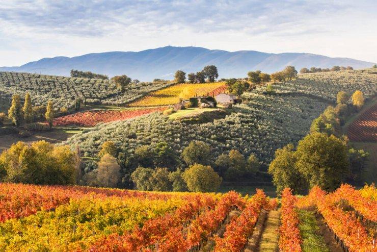 Namigi za izlet po slikovitem italijanskem podeželju