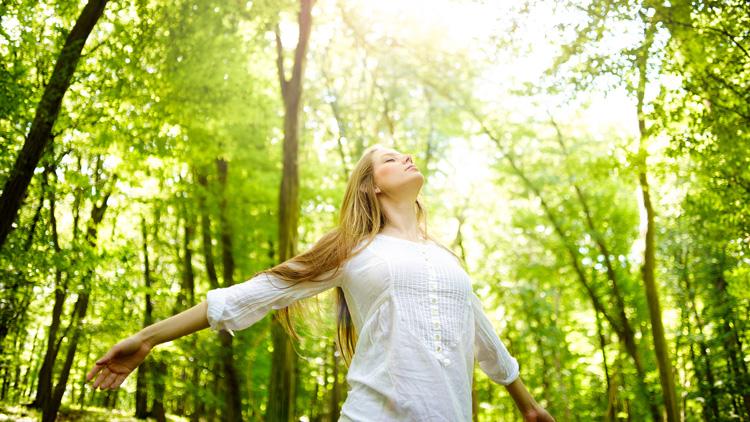 20 razlogov zakaj imamo radi drevesa