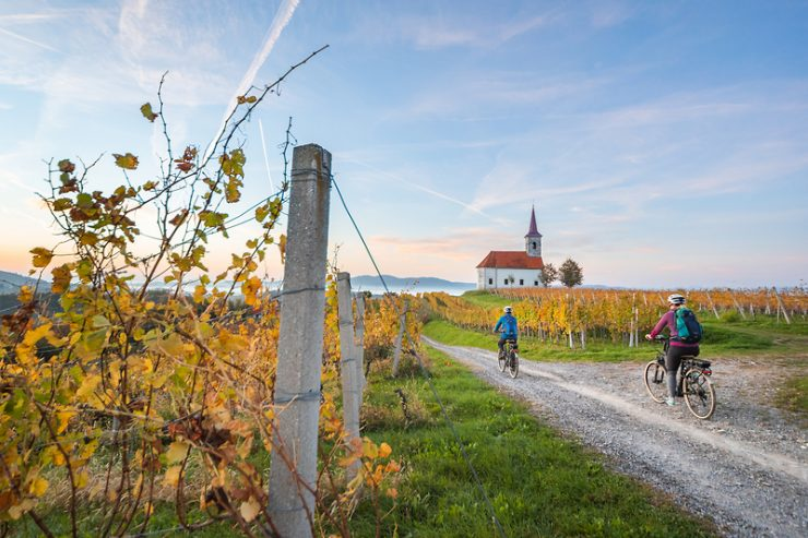 V zeleni shemi 4 destinacije napredovale k zlatemu znaku Slovenia Green Destination