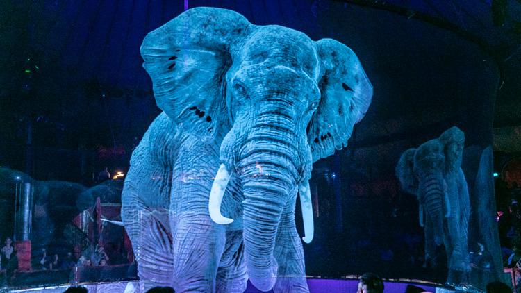 Nemški cirkus namesto živih živali uporablja magično izkušnjo hologramov