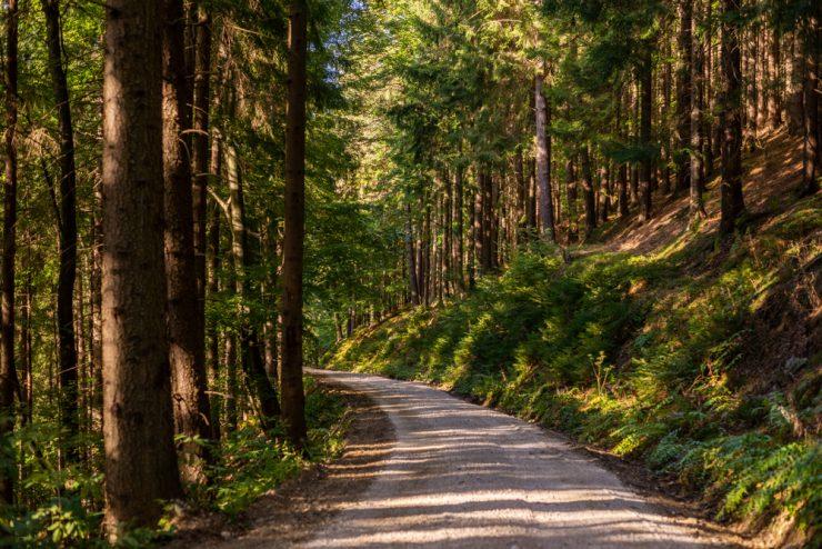 Slovenija 13. na lestvici trajnostne konkurenčnosti