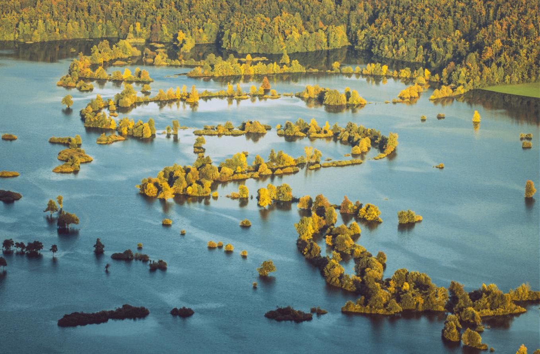 Varovanje narave: od pobude Spomenica že 100 let!
