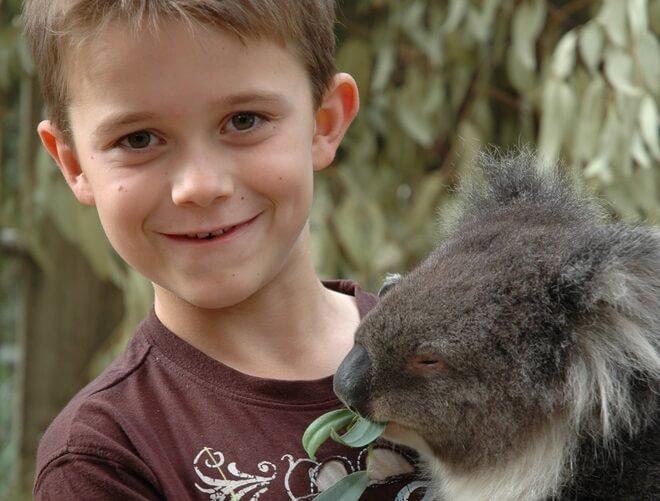 10-letni deček prodaja zelo cenjene ragbi čevlje - za koale