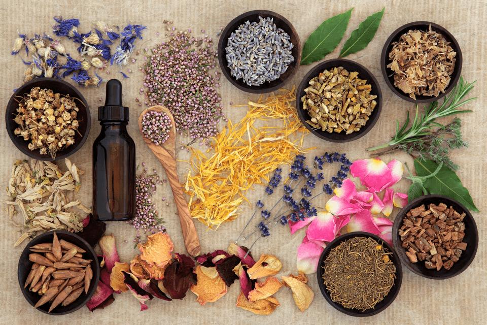 Najmočnejša naravna 'zdravila', ki jih uporablja tudi medicina