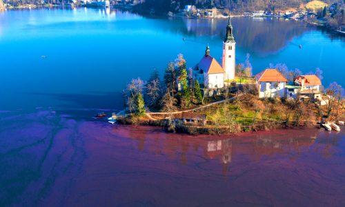 Blejsko jezero v vse slabšem stanju - kdo bo ukrepal?