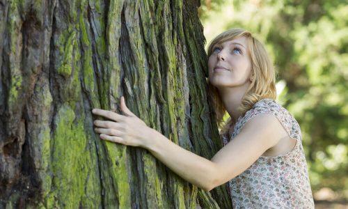 Islandija svetuje: Objemi drevo za lajšanje izolacije