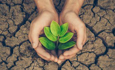 20 preprostih nasvetov, kako lahko vsakodnevno pripomoremo za ohranjanje okolja